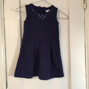 Barely Worn Max Studio Pleated Dress w/ Pockets